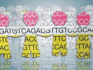 1000-genomes-consortium