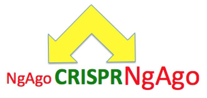 NgAgo-CRISPR