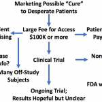 Burt Northwestern Stem Cell MS Trial Part 3: Funding, Patient Perspectives, & the Future