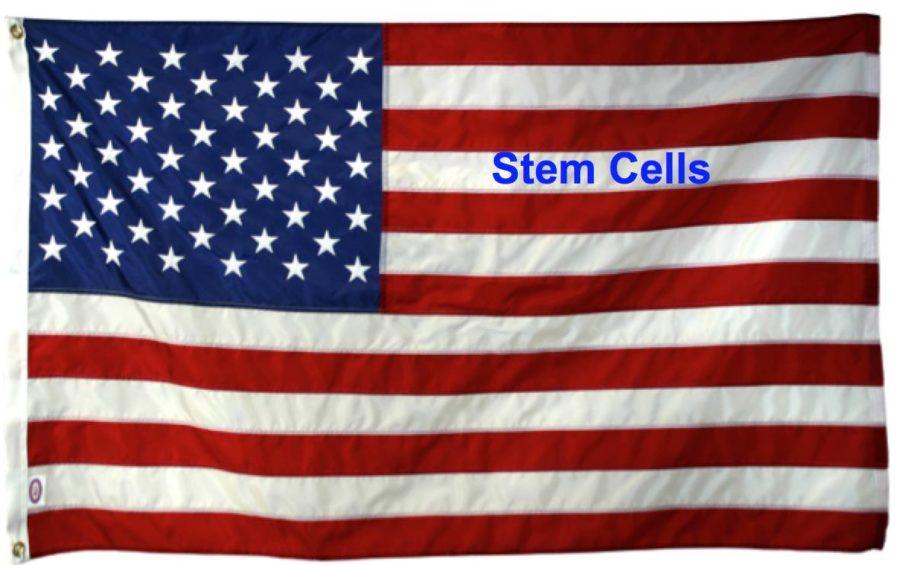stem-cells-Memorial-Day-e1496074716637