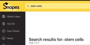 Snopes Stem Cells