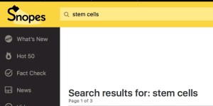 Snopes Stem Cells