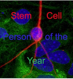 stem cell person of the year