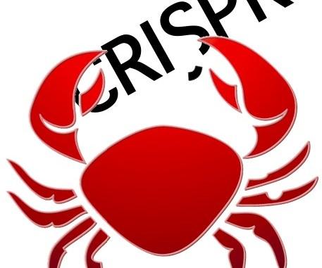 Cancer CRISPR