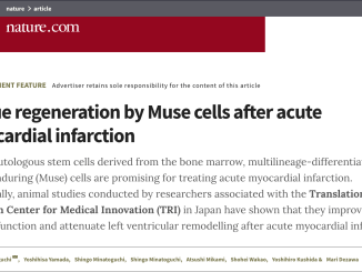Muse cell ad on Nature