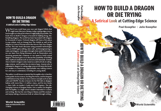 How to Build a Dragon or Die Trying