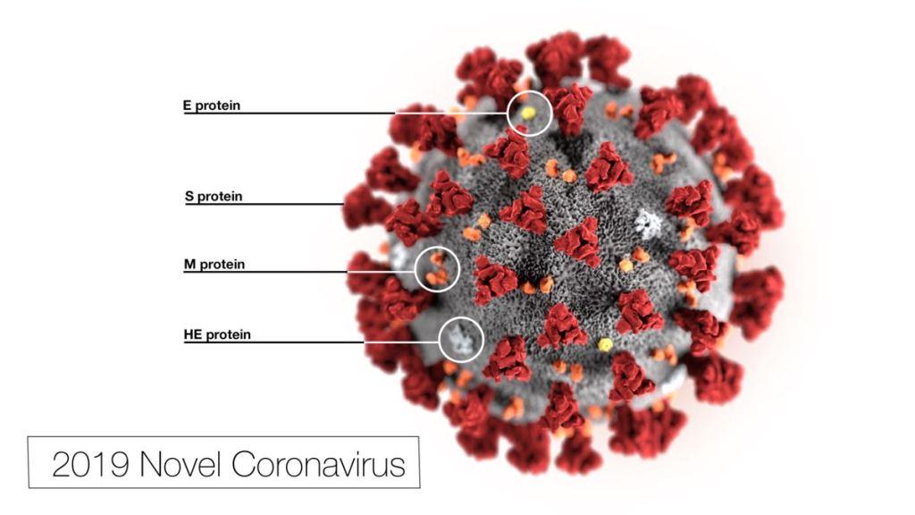 2019-nCoV-CDC-23313-COVID-19