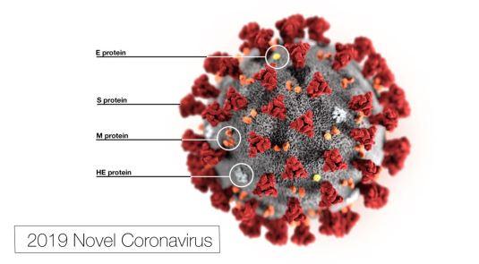 2019-nCoV-CDC-23313 COVID 19