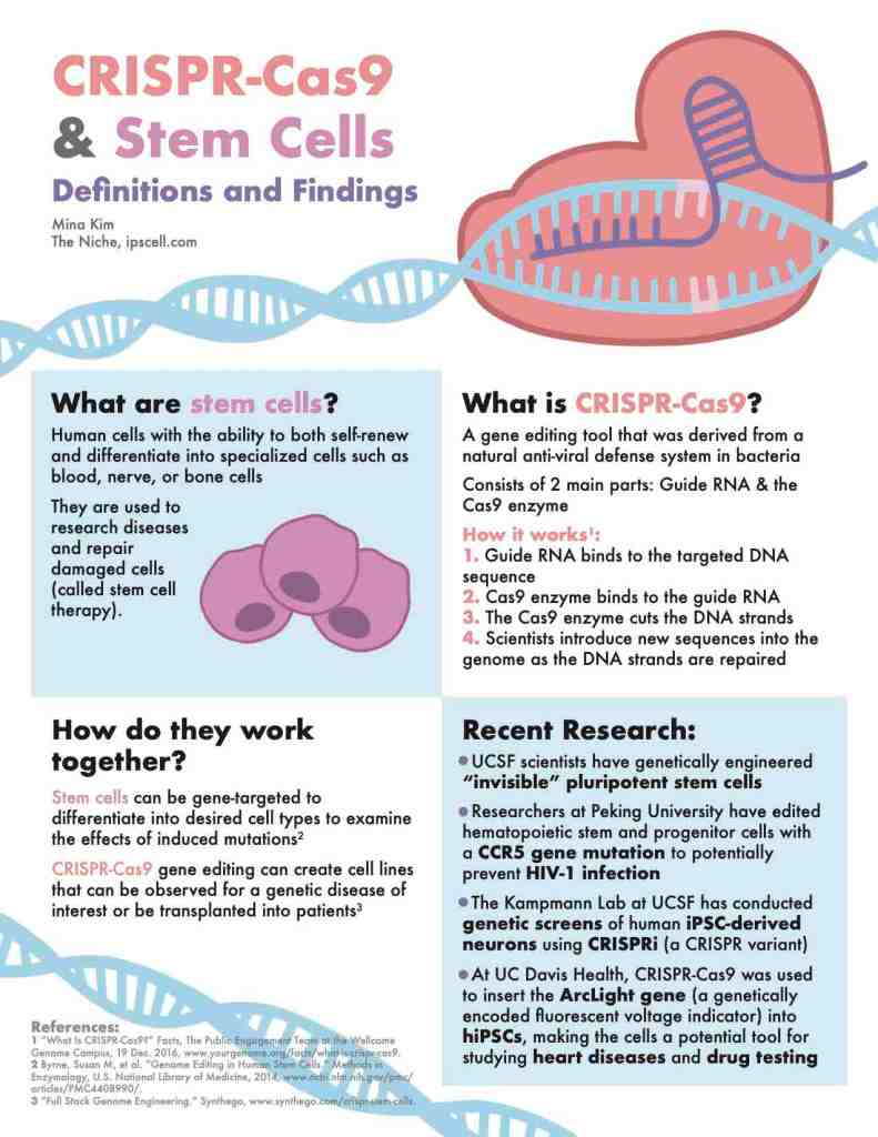 CRISPR-infographic-stem-cells_small