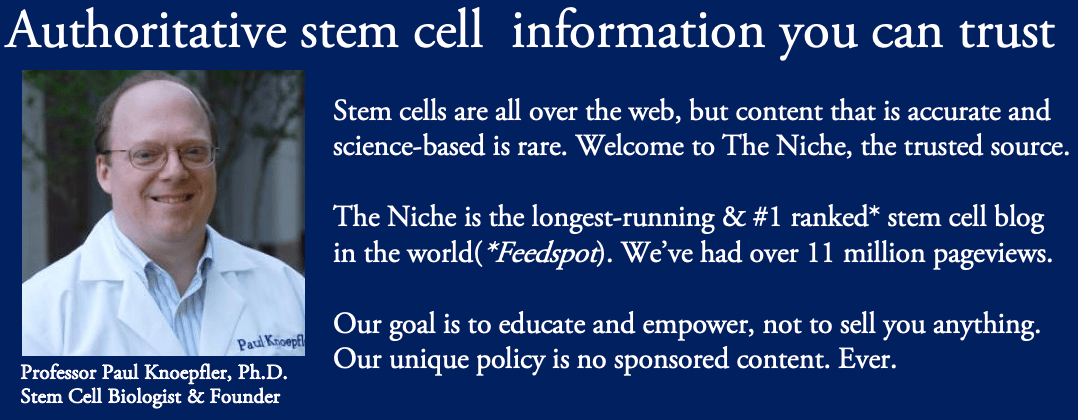 the niche trusted stem cell blog