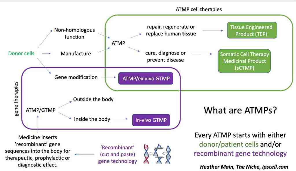 atmp therapy