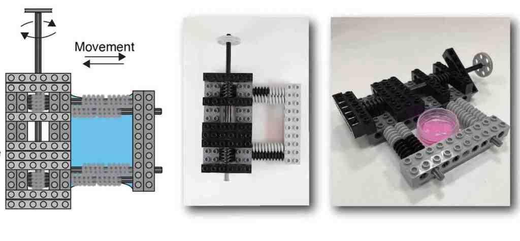 Legos for stem cells Fig 1b