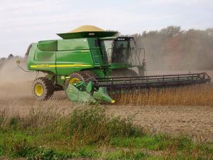 From seven percent of soybean acres and one percent of corn in 1996, GE acreage in the U.S. is now 94 percent of soybean and 88 percent of corn. / Credit:Public domain