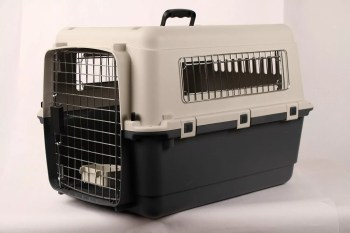 Best Pet Carrier