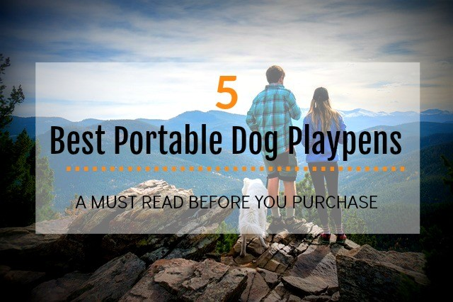 Best Playpens for Puppies and Dogs Reviews