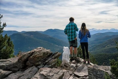 Couple camping with dog