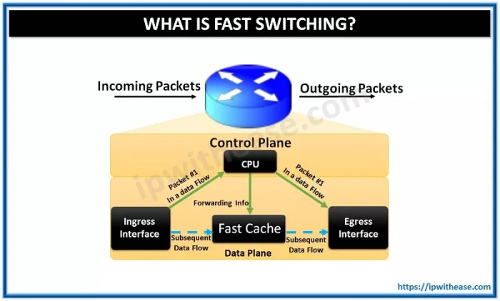 fast switching cisco