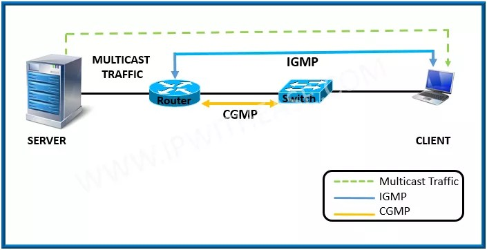 multicast | IP With Ease