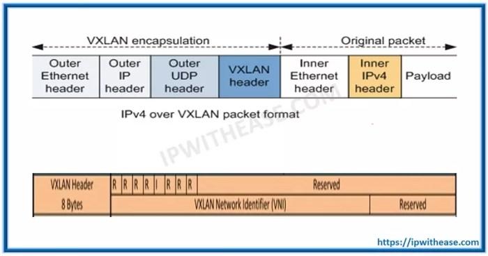 vxlan header