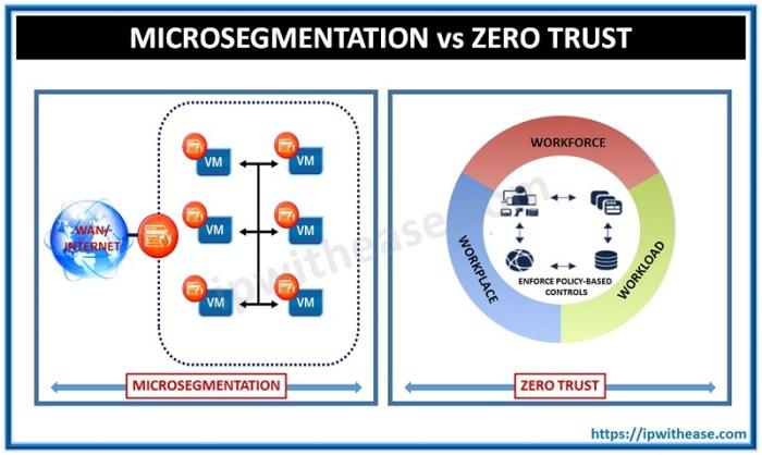 what is microsegmentation