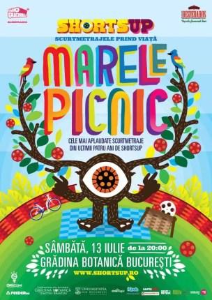 Poster-Marele-Picnic-SUP