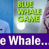 Blue Whale Myths Busted!