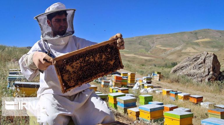 Iran is one of the largest producers of honey