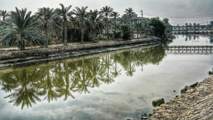 من وحي السياب