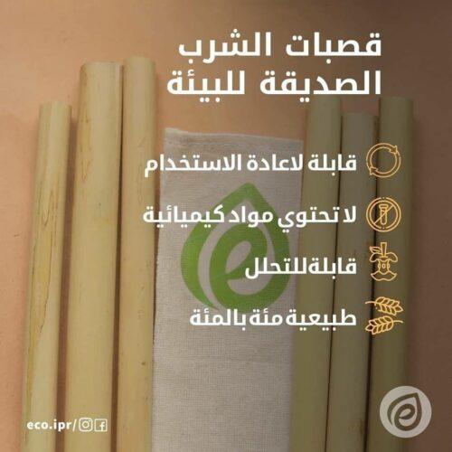 photo5242326950402438406