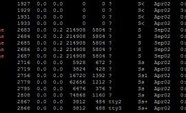 الامر ps في نظام التشغيل لينكس