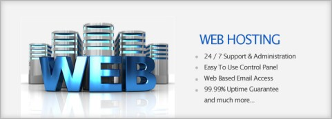 complete website in just rupees 999 for Year