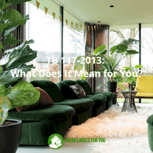 TB 117-2013 What Does It Mean for You. A photo of upholstered furniture that most likely complies to California TB 117.