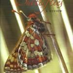 Ireland's Butterflies: A Review