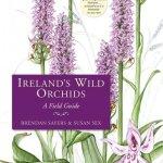 Irelands Wild Orchids