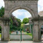 Ireland's Urban BioBlitz, Limerick