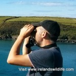 Discover Wildlife Walks