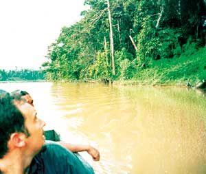 Ecotourism is part of conservation