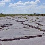 Limestone Pavement, The Burren, Co. Clare