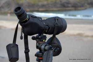 Vanguard Endeavor HD spotting scope with stay on case