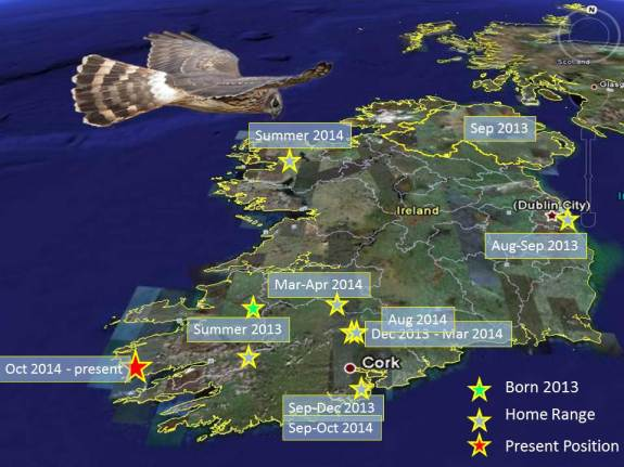 A map showing Heather's movements from 2013 to the time of her illegal shooting in Kerry last month.
