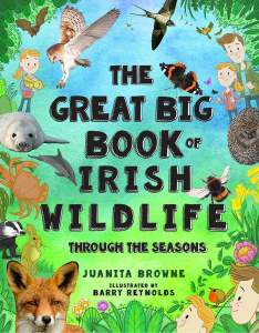 The Great Big Book of Irish Wildlife Through The Seasons by Juanita Browne