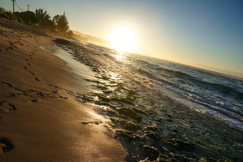 Oahu-North-Shore-2
