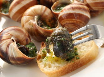 Image result for escargot recipe