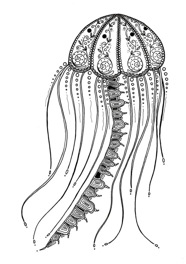 Delicate Jellyfish Adult Coloring Page  FaveCrafts.com