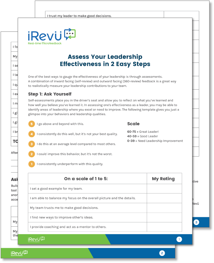 Assess Your Leadership Effectiveness in 3 Easy Steps Mockup