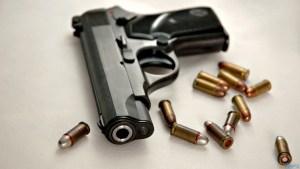196 rounds of ammunition seized