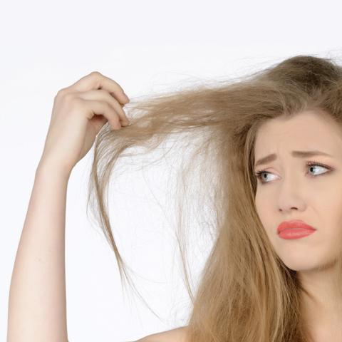 capelli secchi e trattati