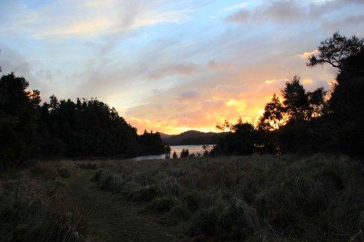 Lake Waikaremoana (181)_1