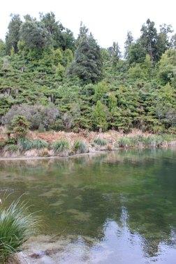 Lake Waikaremoana (303)_1