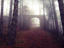 Ruine im Nebel